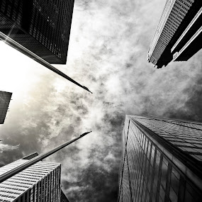 Surrounded by Giants by Paul Aparicio - Buildings & Architecture Public & Historical ( clouds, contrast, detail, willis tower, b&w, black and white, shadow, perspective, sears tower, architecture, chicago, light )