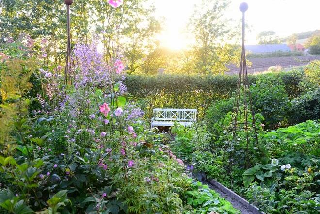 Åbne haver - Claus Dalby - mit haveliv