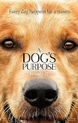 A Dog's Purpose (HDCAM)