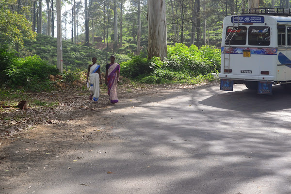 Около чайных плантаций, Элла, Шри Ланка