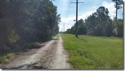 Trailview - Forest Rd 1