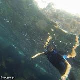 Snorkel no Chapéu Chinês - Galápagos