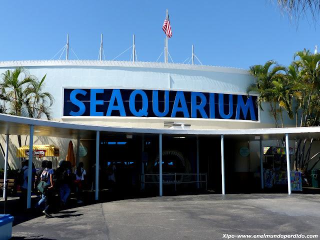 seaquarium-miami.JPG