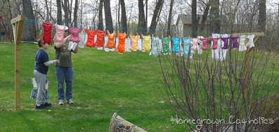 Homegrown Catholic Laundry Lines