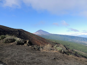 First view of Mt Teide