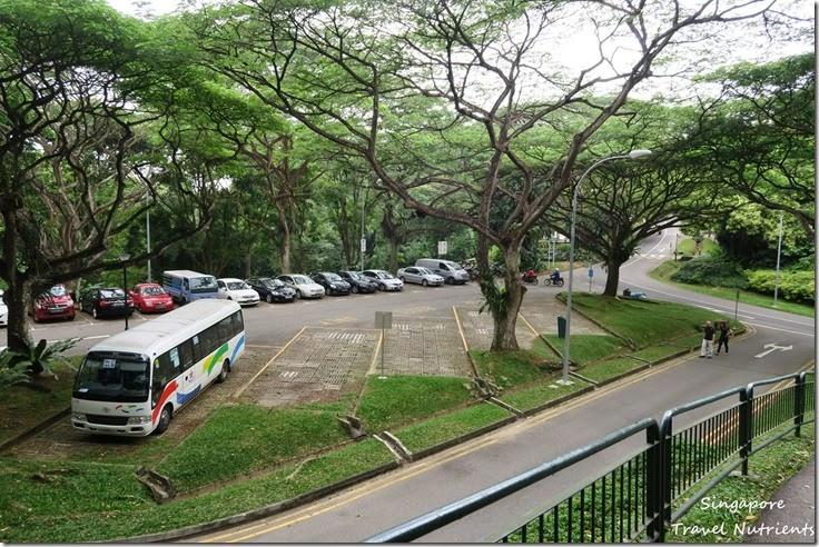 新加坡花柏山 (52)