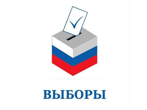предварительные выборы