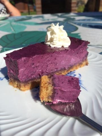 blåbärscheesecake allt om mat