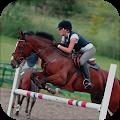 Horse Riding Adventure Hero APK for Bluestacks