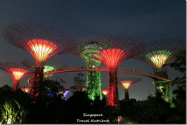 新加坡超級樹燈光秀 (33)