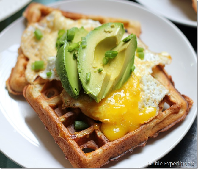Savory Waffles with Fried Eggs and Avocados