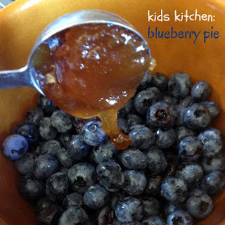 No Sugar Blueberry Pie Recipes