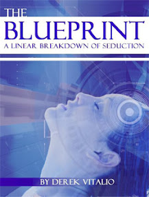 Cover of Derek Vitalio's Book The Blueprint A Linear Breakdown Of Seduction