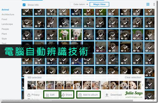 flickr2015.3