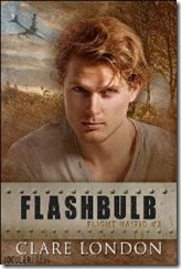 flashbulb250