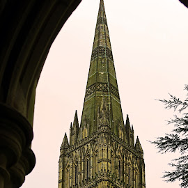 The Spire ~ Salisbury Cathedral by Ingrid Anderson-Riley - Buildings & Architecture Places of Worship