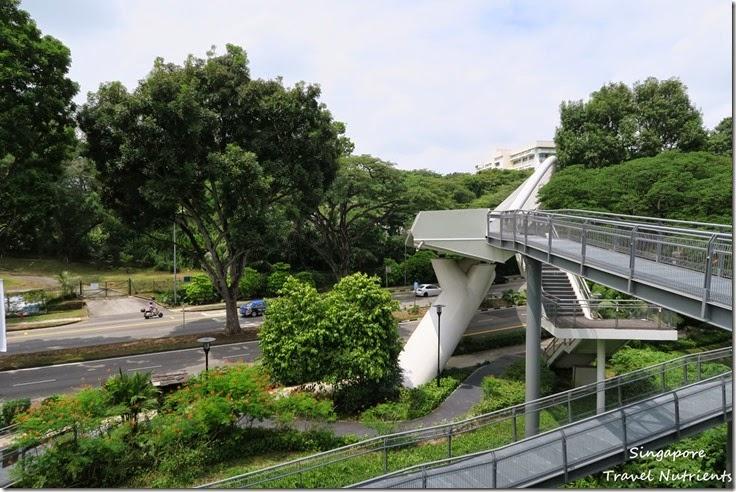 新加坡花柏山 (84)