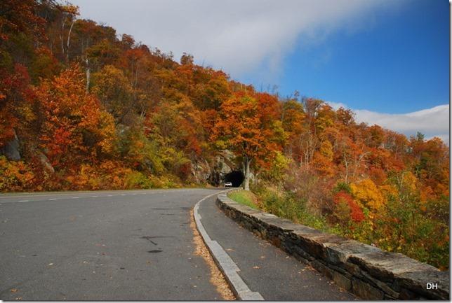 10-23-15 A Skyline Drive Shenandoah NP (125)