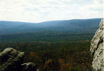 Panoramic view, Michaux State Forest, Pennsylvania.