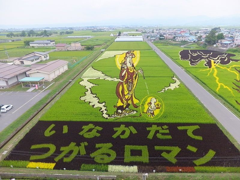 japanese-rice-paddy-art-6