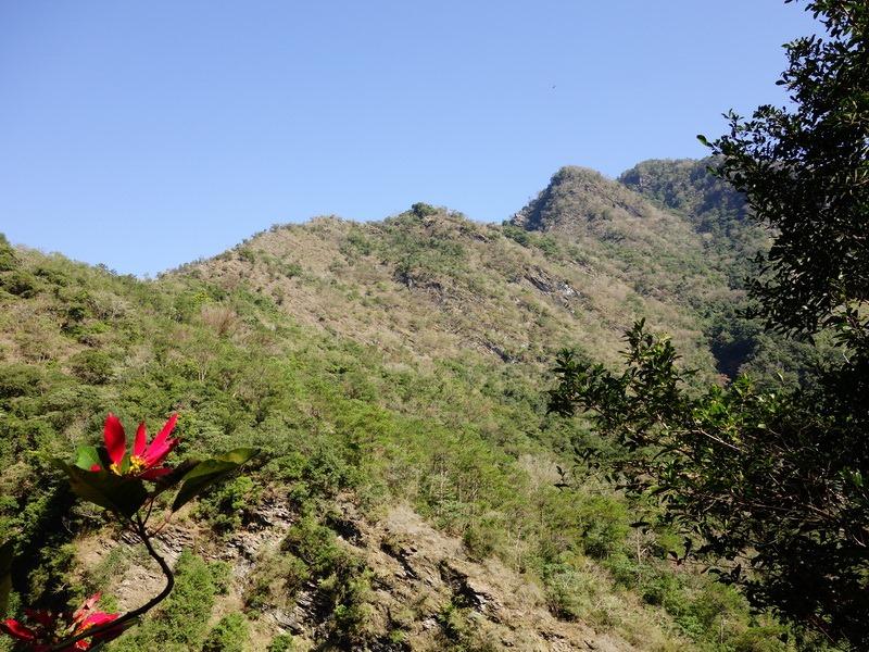 2014_0101-0105 萬山神石、萬山岩雕順訪萬頭蘭山_0078