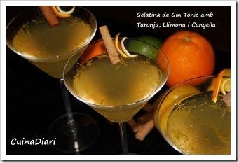 7-gin tonic jelly-ppal