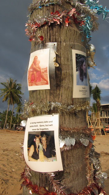Pictures on a palm tree remembering tsunami victims.