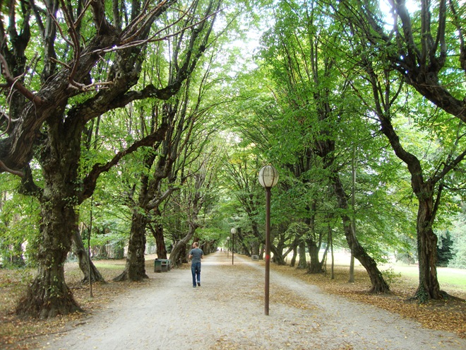 park slovenska bistrica