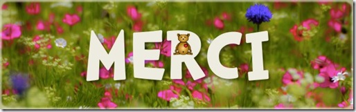 Merki enkore pour votre aide !!!