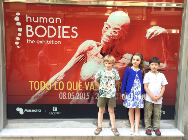 Asturias con niños: Human Bodies: plan urbano para este verano en Oviedo