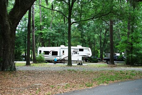 Skidaway campsite 2