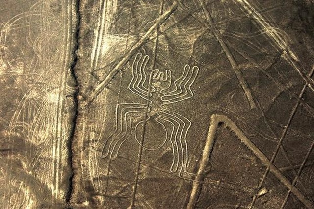 linhas de nazca originais