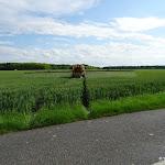 Champ de blé en traitement