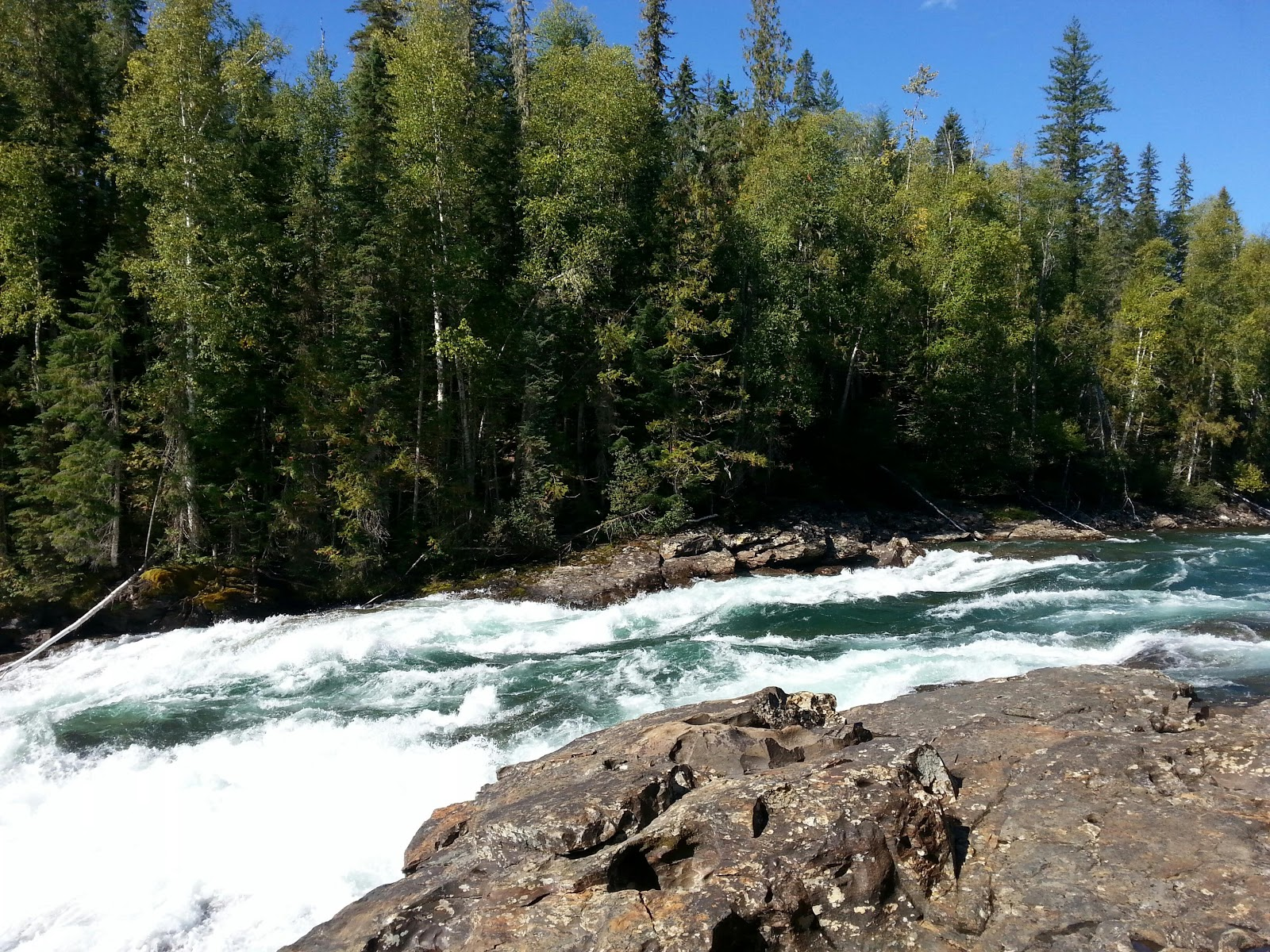 Reis Canada En Noord West Amerika Wells Gray Pp Kamloops