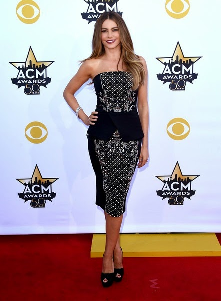 Sofia Vergara attends the 50th Academy Of Country Music Awards