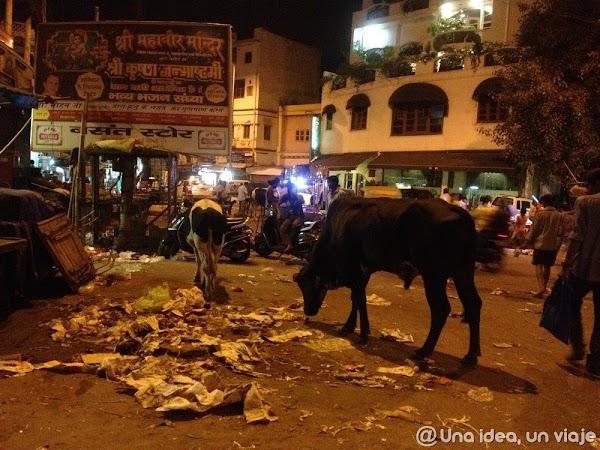 15-dias-viaje-rajastan-delhi-unaideaunviaje.com-11.jpg