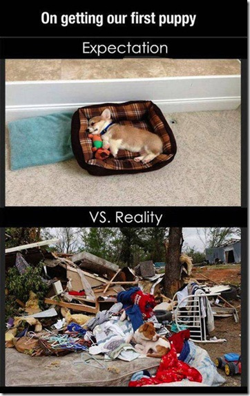 expectation-vs-reality-046