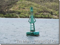 008 Buoys look as if from Wizard of Oz!!