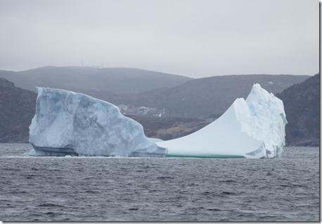nl_ls_d1_st_anthony_bight_glacier