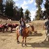 kufri horse ride1.jpg