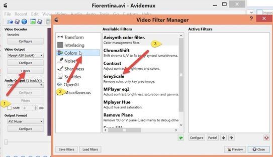 introdurre-filtro-scala-grigi