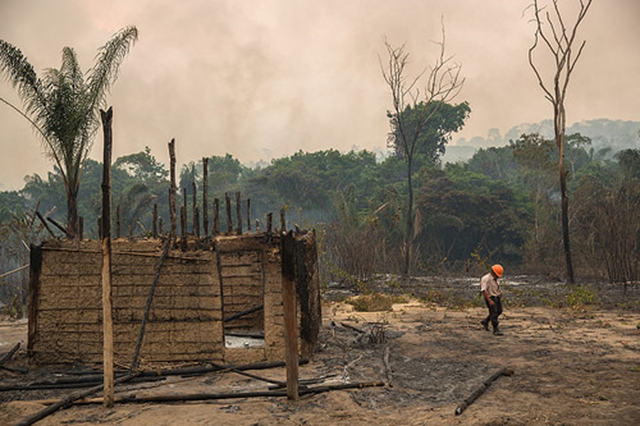 House burned by forest fire in the Indigenous Land Arariboia, 25 October 2015. The fire has already lasted two months and is the largest ever recorded in indigenous lands in Brazil. About 45 percent of 413,000 hectares of land have been destroyed. Photo: Marizilda Cruppe / Greenpeace