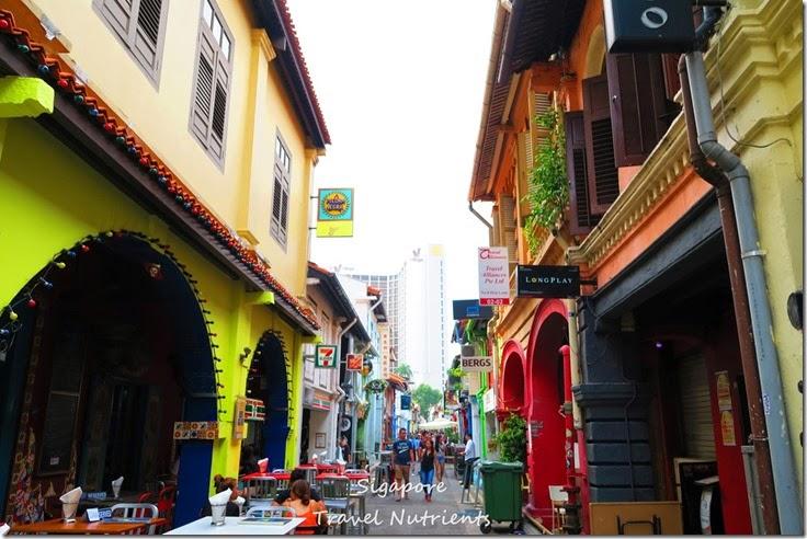 新加坡 哈芝巷 (27)