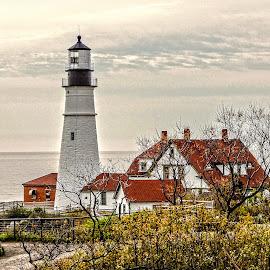 Coastal Lighthouse by Richard Michael Lingo - Buildings & Architecture Public & Historical ( maine, historic, public, lighthouse, buildings )