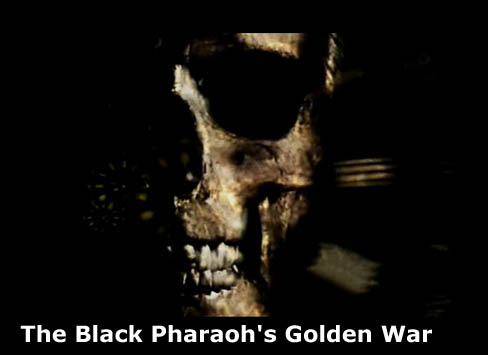 Z³ota wojna czarnych faraonów / The Black Pharaoh's Golden War (2009) PL.TVRip.XviD / Lektor PL