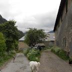 Les chiens nous accompagne jusqu'à la sortie du village