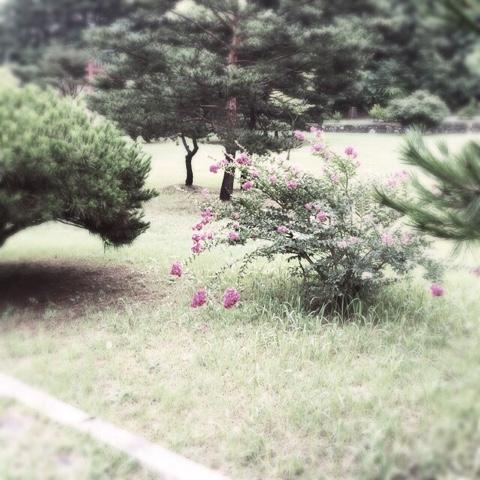 blogger-image--868951501