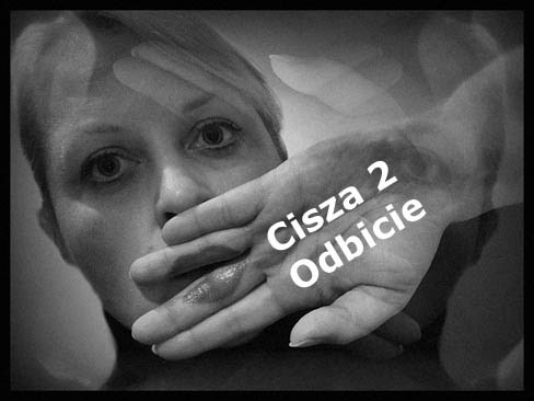 Cisza 2/Odbicie (2005) PL.TVRip.XviD /  PL