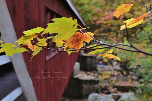fall covered bridge leaves