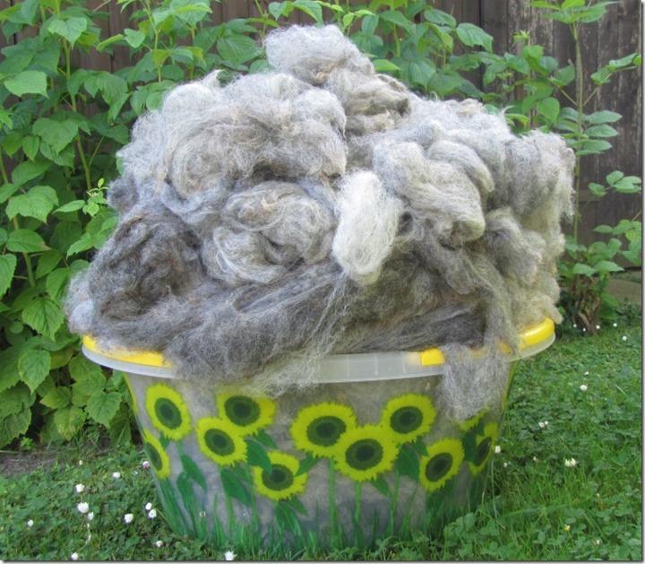 Wollwäsche 2